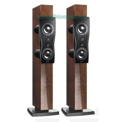 Dynaudio Confidence C2 Platinum (Mocca High Gloss)