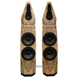 Avalon Acoustics Saga